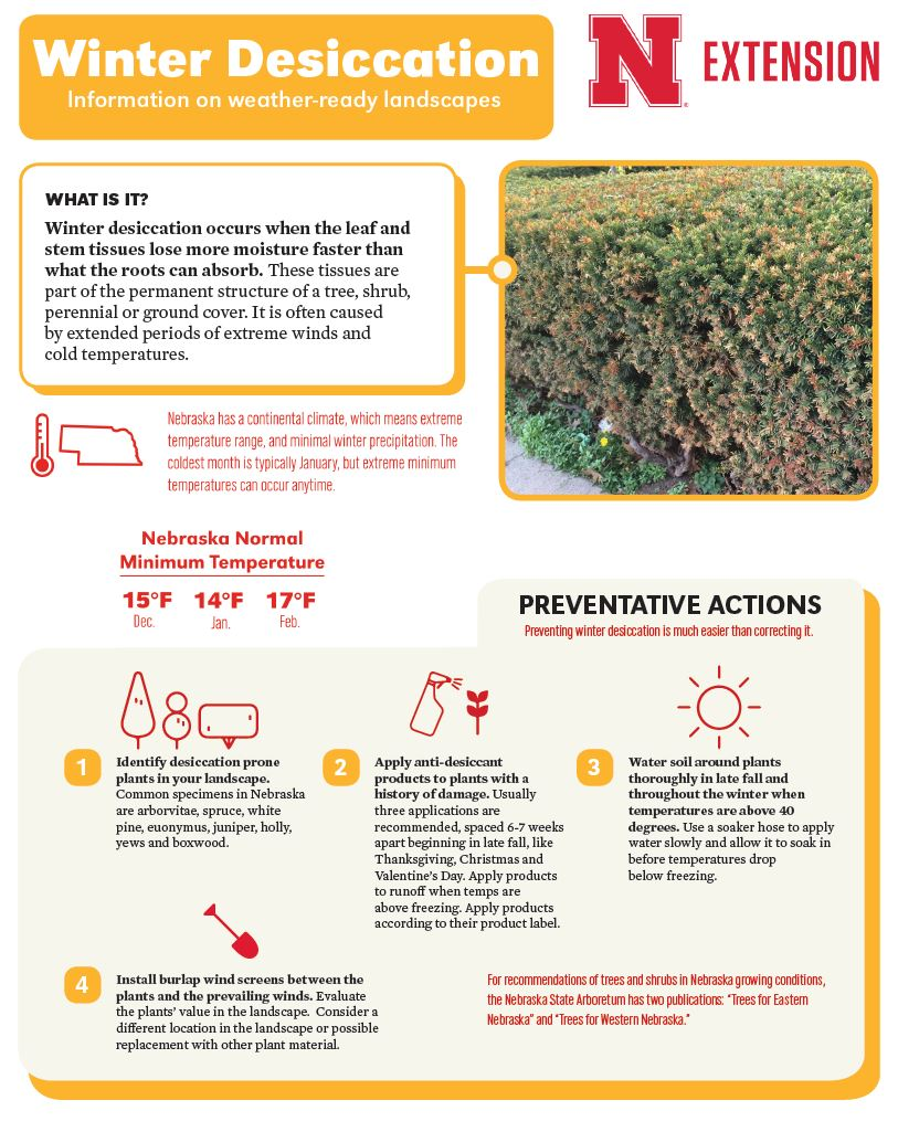 Winter Desiccation Infographic
